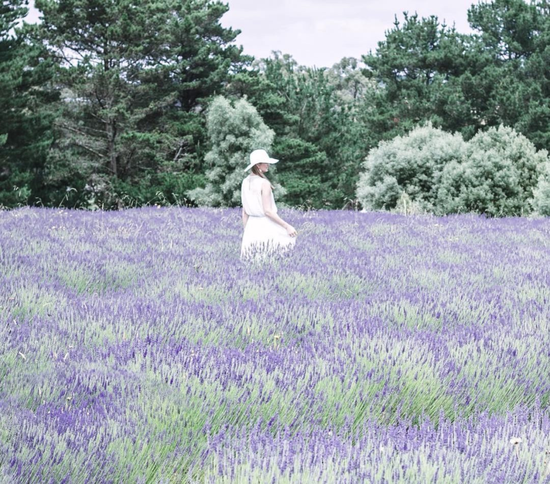 Kate walking through the Lavender Fields